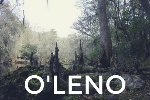O'Leno Spring Retreat